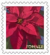 2013 holiday greetings