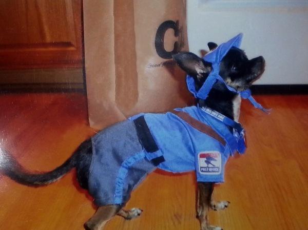 Postal Pup