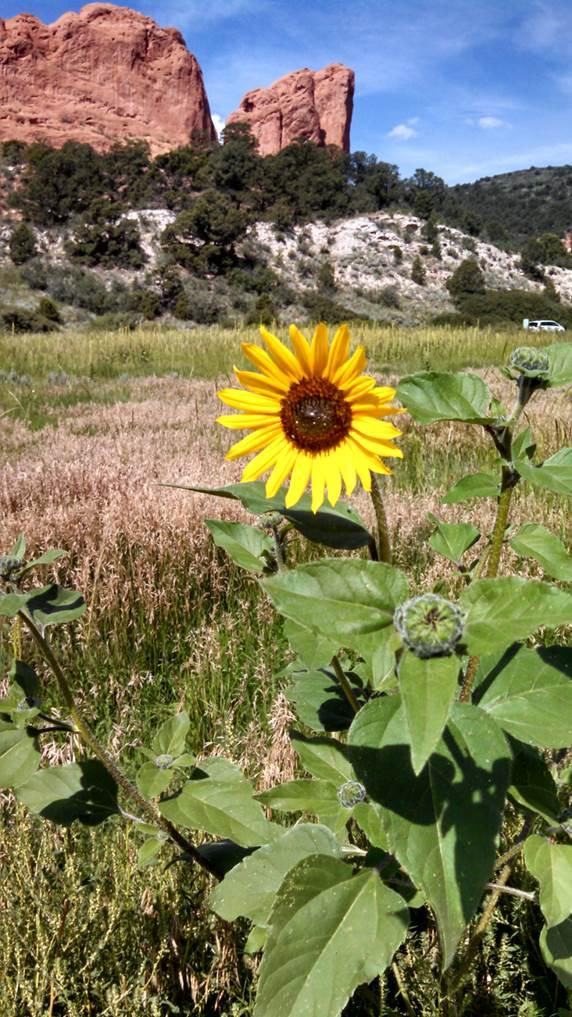 Keller also visited Garden of the Gods in Colorado Springs, CO.